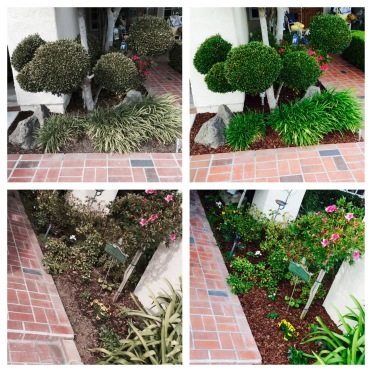 Nio Landesign Llc Quality Landscaping For Quality Homes